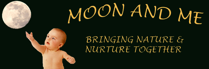 moonandme.com banner